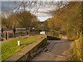 SJ9689 : Peak Forest Canal at Lock#7 by David Dixon