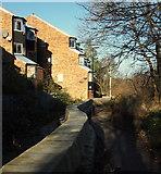 SK3536 : Derby - Riverside Walk by David Hallam-Jones