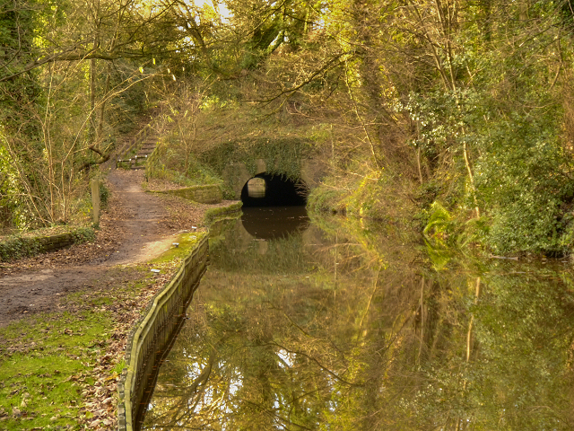 Peak Forest Canal, Hyde Bank Tunnel
