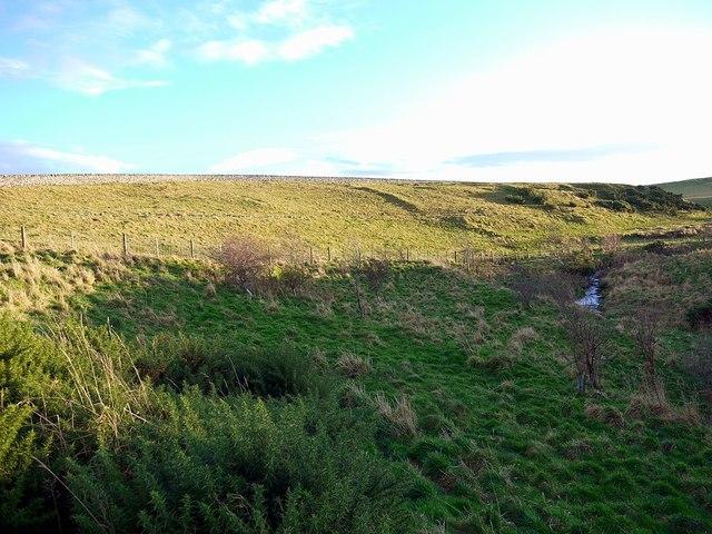 Stream valley below Old Middleton