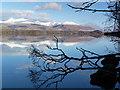 NN0118 : Winter morning, Loch Awe by sylvia duckworth