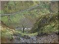 NY2926 : Steep ravine down the hillside by Graham Robson