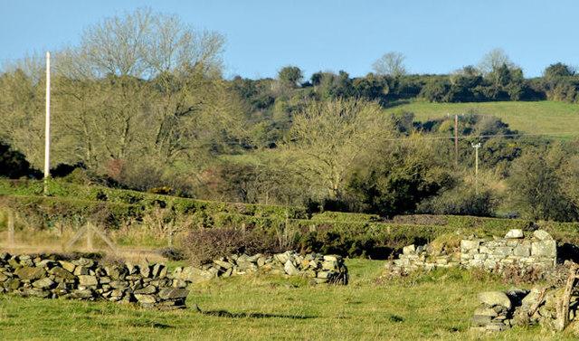 Drystone walls near Saintfield (2)