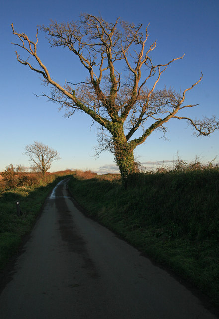 Lane from Antony towards St John