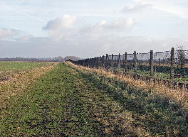 Permissive path beside travelling telescope track