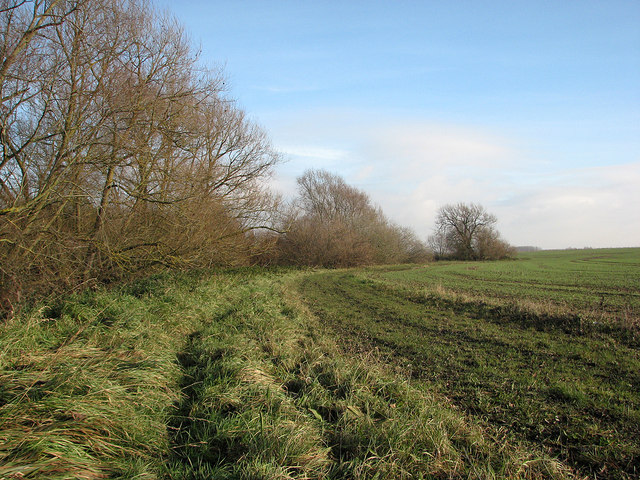 Path beside Bourn Brook