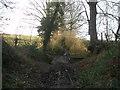 SE3007 : Bridge on Royd Lane west of Higham by John Slater