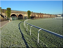 SJ3965 : Racecourse and Viaduct at Chester by Jeff Buck