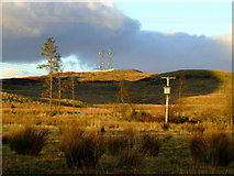 NS2472 : Masts on Scroggy Bank by Thomas Nugent