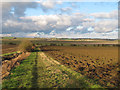 TQ9095 : Ploughed land as seen from Roach Valley Way by Roger Jones