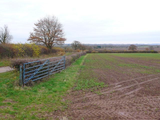 Fields near Snowford Lodge
