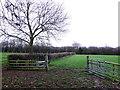 SP3860 : Field Gate near Harbury by Nigel Mykura