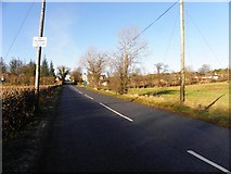 H5373 : Drumnakilly Road, Drumnakilly by Kenneth  Allen