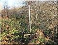 SH6837 : Disused Stile and Footpath at Trawsfynydd by Jeff Buck