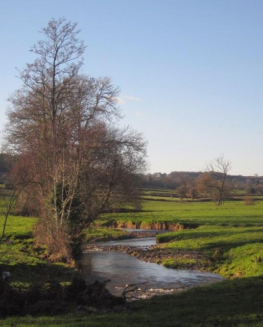 Corry Brook
