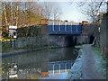 SJ9498 : Whitelands Bridge by David Dixon