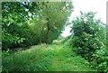 TQ0438 : Wey South Path by N Chadwick