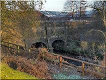 SJ9398 : River Tame, Dukinfield Aqueduct by David Dixon