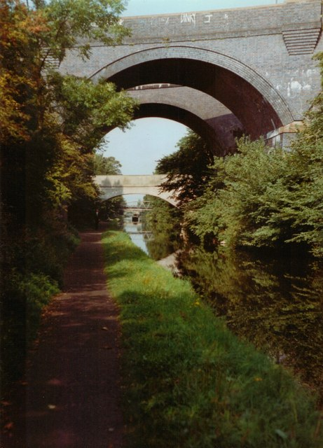 Oxley viaducts