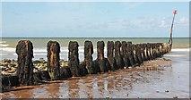 TG2142 : Cromer Beach - Groyne by John Salmon