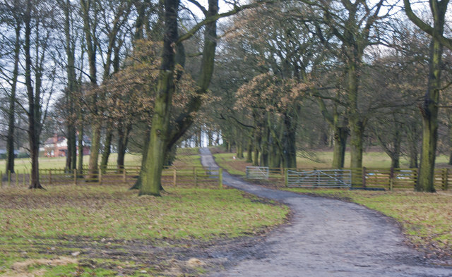 The road into Knowsley Park from Paddock Lodge