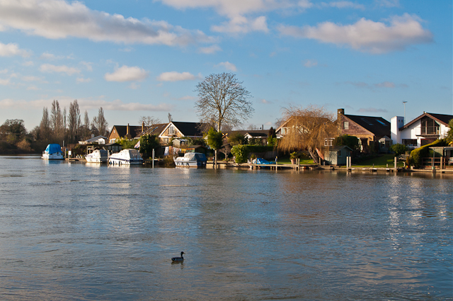 Thames Meadow