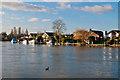 TQ0966 : Thames Meadow by Ian Capper