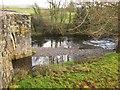SX5076 : Tavy at Harford Bridge by Derek Harper