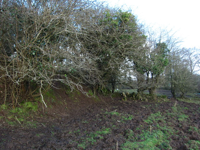 Shonegawna Castle: remains of perimeter walls