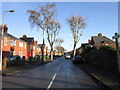 TA0627 : River Grove, Gipsyville, Hull by Ian S