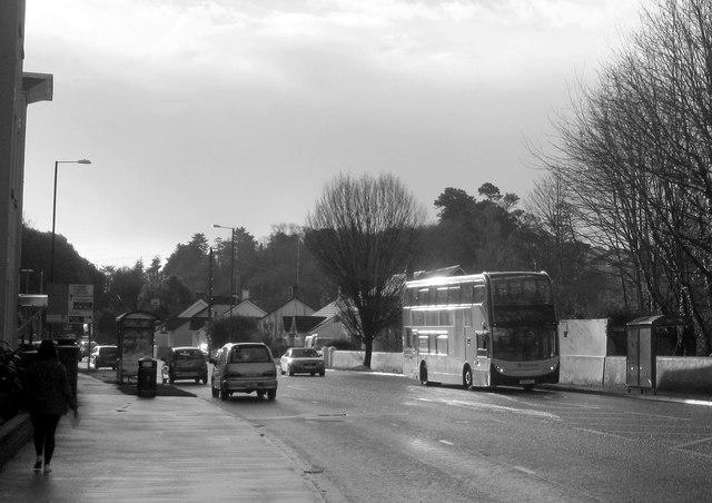 Newton Road, Torquay