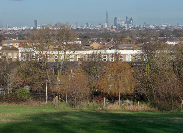 View from Norwood Park (3)