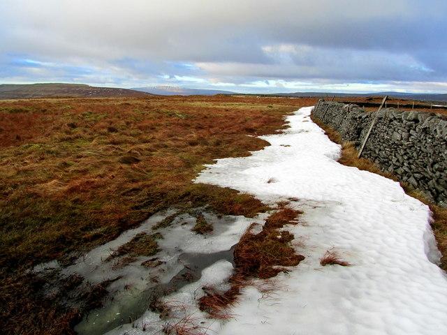 Boundary Wall on Eller Carr Moss