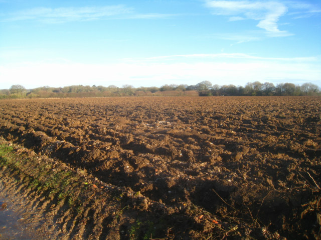 All ploughed up - Danny Field by Sandy B
