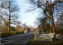 SU5598 : Entering Nuneham Courtenay by Des Blenkinsopp