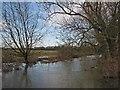 TL4354 : Bourn Brook: burst banks by John Sutton