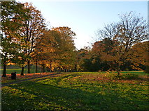NS6859 : Autumn colours in Bothwell Castle policies by Alan O'Dowd