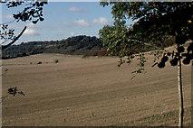 TQ2352 : Below Conybury Hill by Christopher Hilton