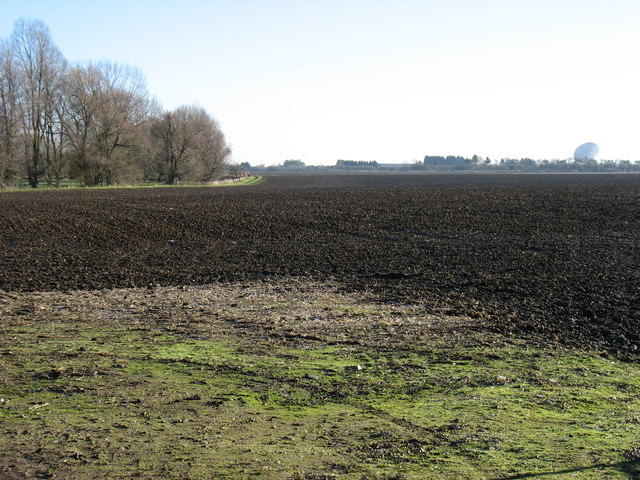 A field south of Comberton