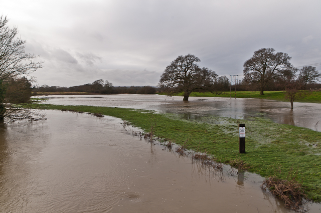 Flooded River Mole at Sidlow Bridge