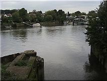 TQ1672 : River Thames by Shaun Ferguson