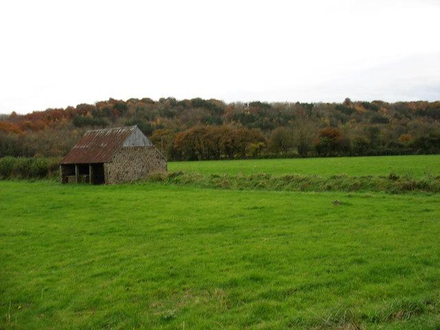 Fields near Chudleigh Knighton