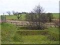 NY8777 : Threpwood Hill Farm by Oliver Dixon