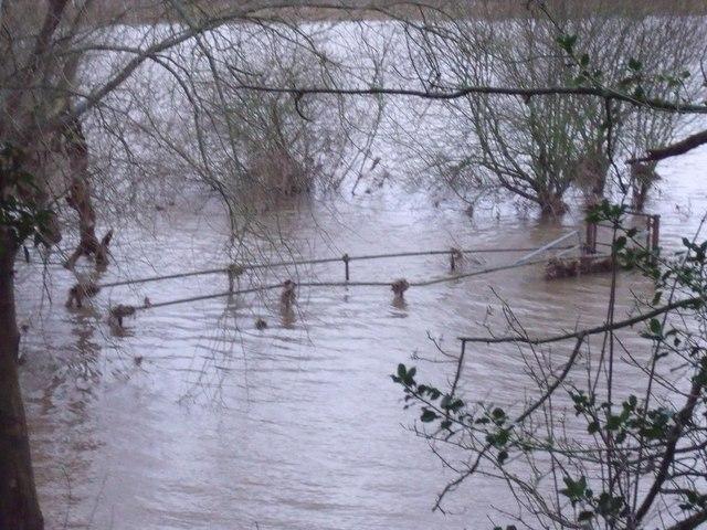 Drowned footbridge