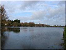 TQ5203 : Flooded Fields by Simon Carey