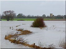 SO8625 : Flooded Leigh Brook, 2 by Jonathan Billinger
