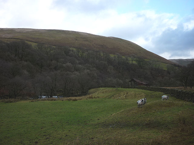 The foot of Borrowdale