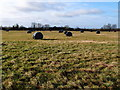 SP7918 : Pasture land and silage bales near Folly Farm by Michael Trolove