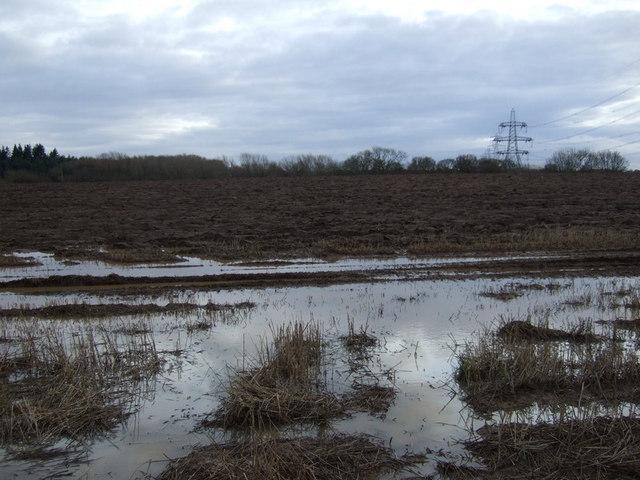 Farmland off the B1264