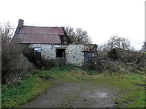 H5371 : Ruined cottage, Bracky by Kenneth  Allen